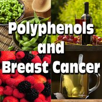 Polyphenols and Breast Cancer